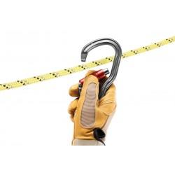 Petzl Vertigo Twist lock